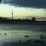Toronto Skyline-Blue