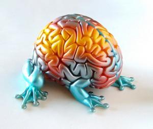Crawling Brain