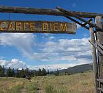 Carpe diem-Latin phrases used in English